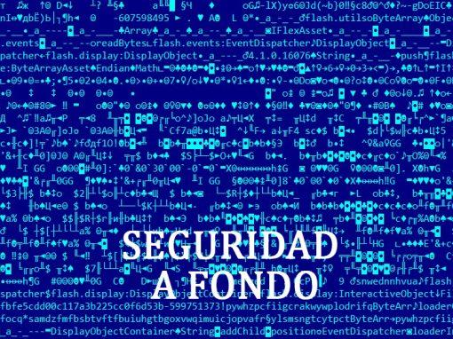 Seguridad a Fondo